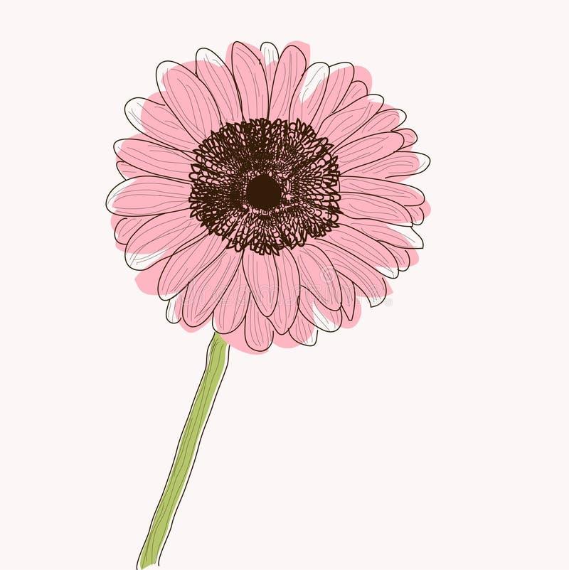 Fleur de marguerite de Gerbera illustration de vecteur