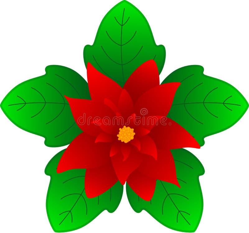 Fleur de Noël illustration stock