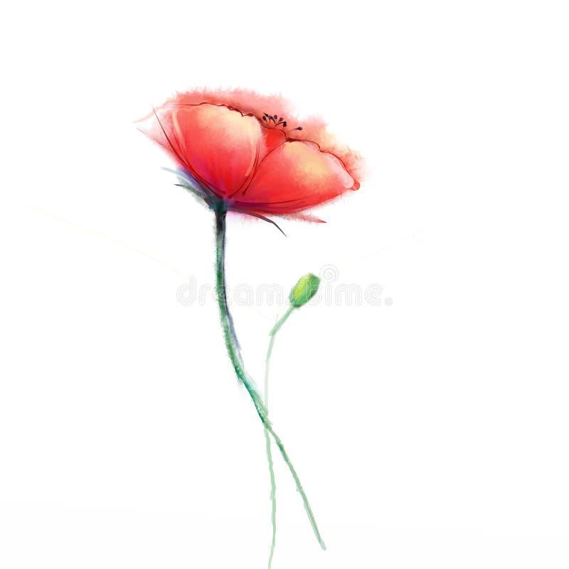 Fleur de pavot de peinture d'aquarelle Fleurs d'isolement sur le fond de livre blanc illustration stock