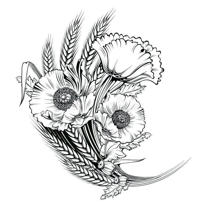 Fleur de pavot de vecteur Illustration de gravure illustration libre de droits