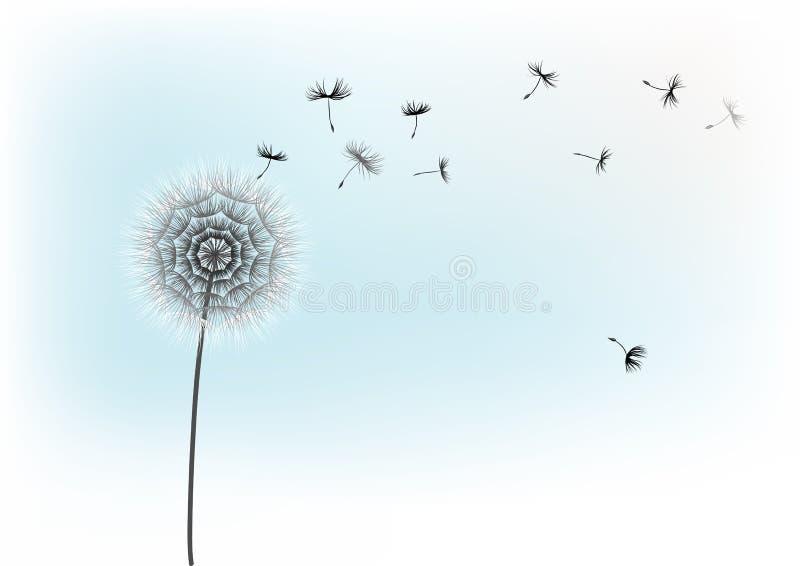 Fleur de pissenlit et graines volantes sur un fond bleu illustration libre de droits