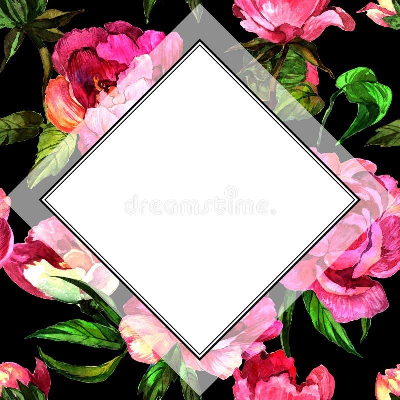 Fleur de pivoine de Wildflower dans le cadre un style d'aquarelle illustration de vecteur