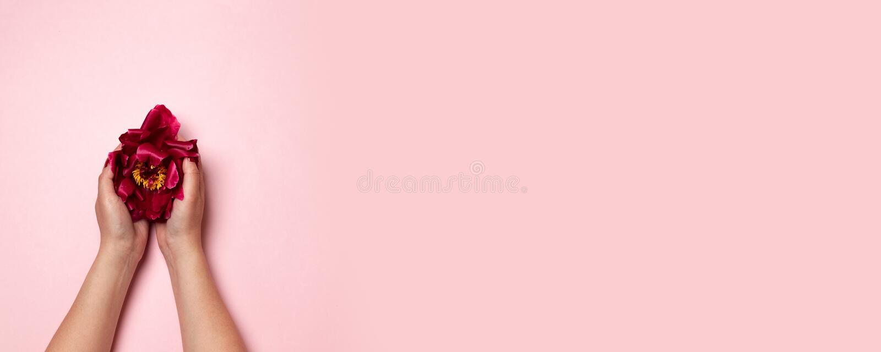 Fleur de pivoine sous forme de corps féminin M?taphore cr?atrice Le jour des femmes internationales photos stock