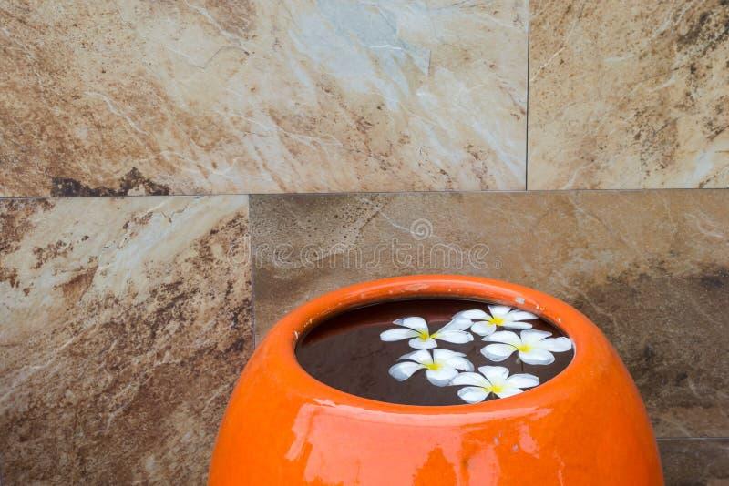 Fleur de Plumeria sur l'eau dans le pot orange images stock
