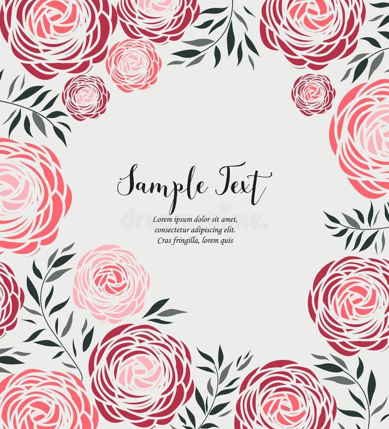 Fleur de ranunculus de vecteur illustration stock