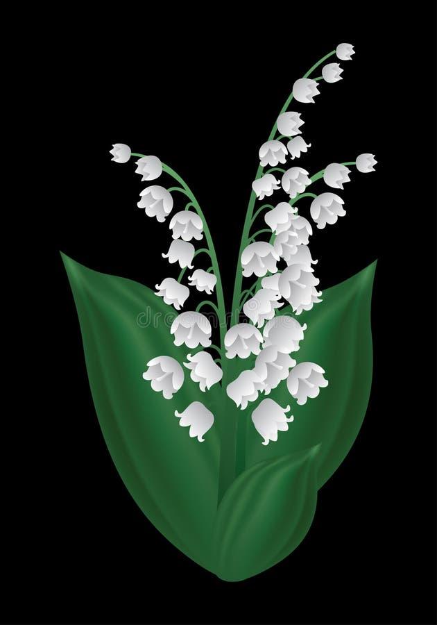 Fleur de ressort - le muguet photographie stock libre de droits