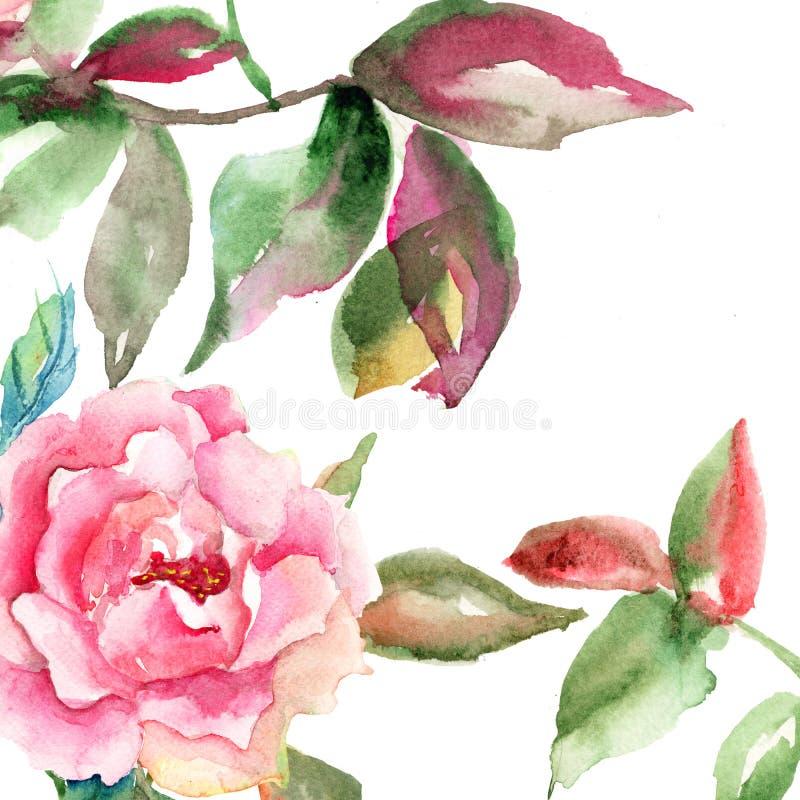 Fleur de Rose avec les lames vertes illustration de vecteur