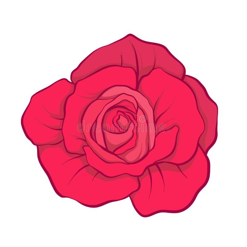Fleur de rose de rouge tirée par la main Ligne courante illustrat de vecteur illustration libre de droits