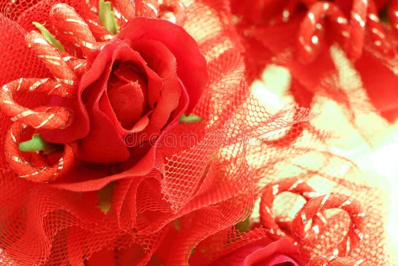 Fleur de roses photos stock
