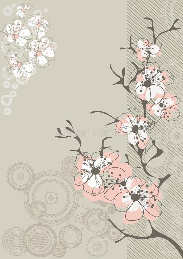Fleur de Sakura sur le gris illustration libre de droits