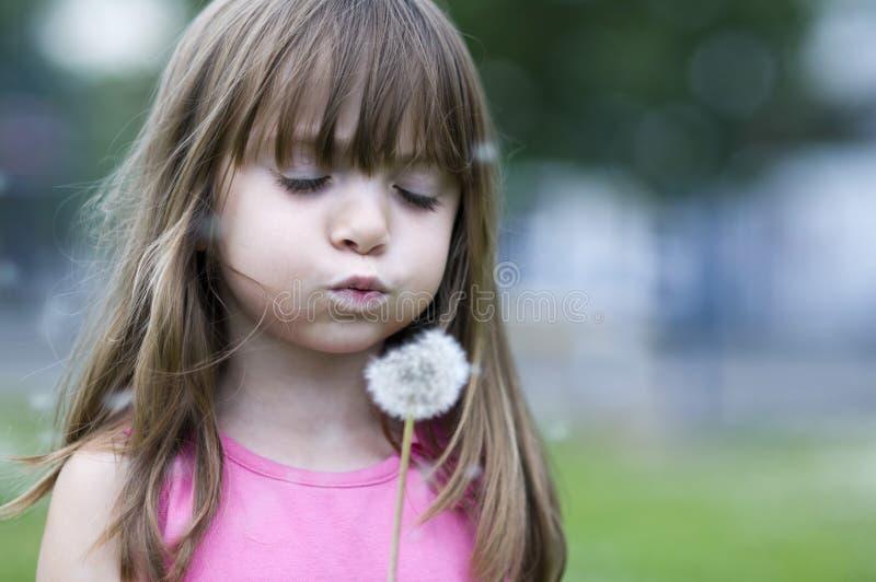 Fleur de soufflement de fleur de petite fille image stock