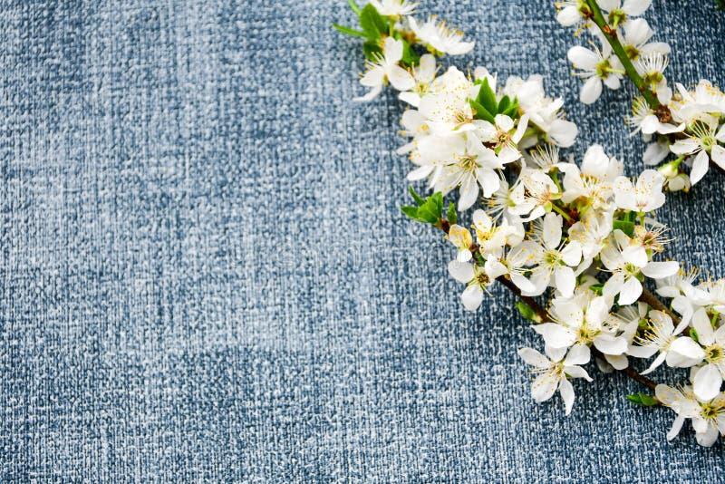 Fleur de source photo stock