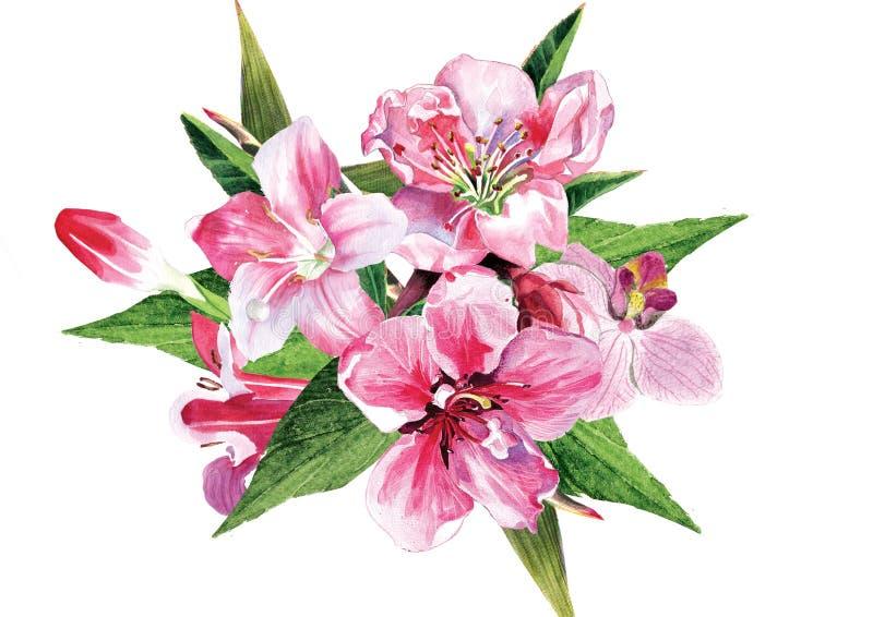Fleur de source illustration libre de droits