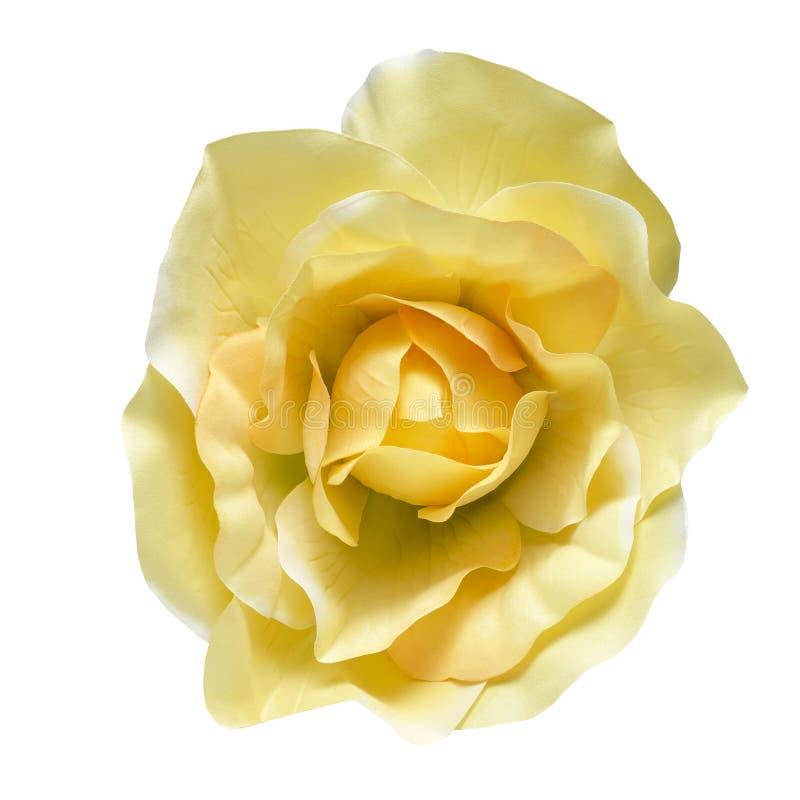 Fleur de tissu photographie stock libre de droits
