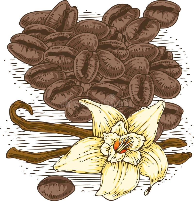 Fleur de vanille avec deux bâtons et grains de café illustration de vecteur