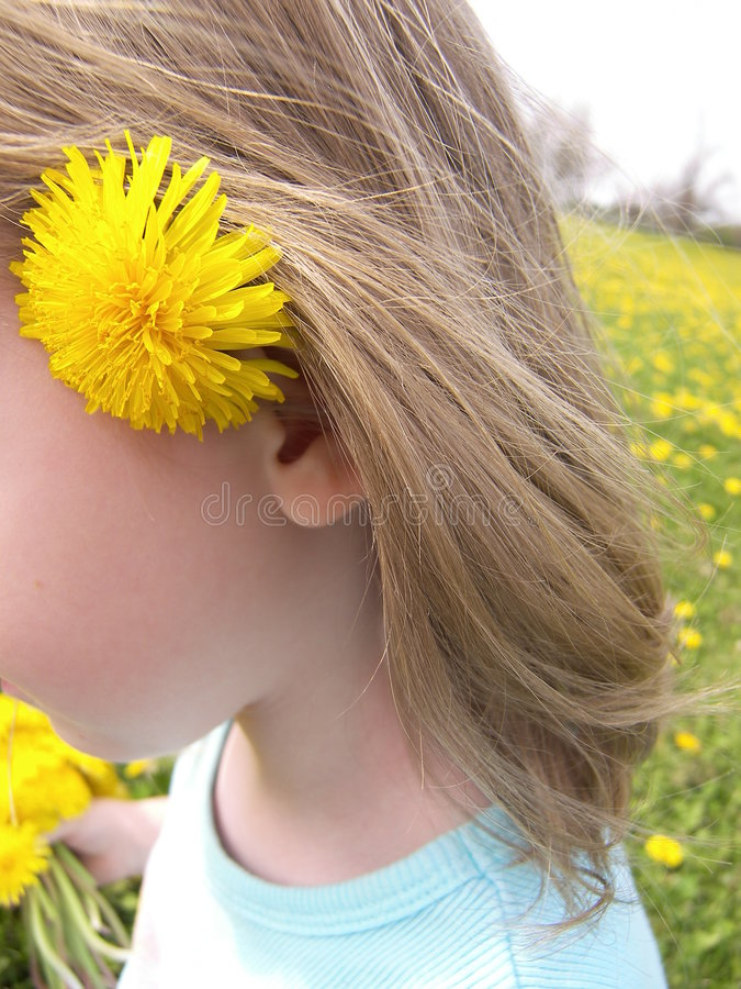 Download Fleur Derrière L'oreille Dans Le Domaine Photo stock - Image du fille, cueillette: 739080