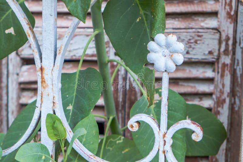 Fleur en métal dans le délabrement photos libres de droits