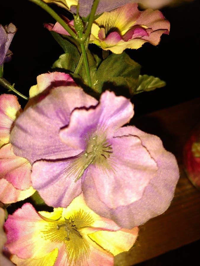 Fleur en soie images libres de droits