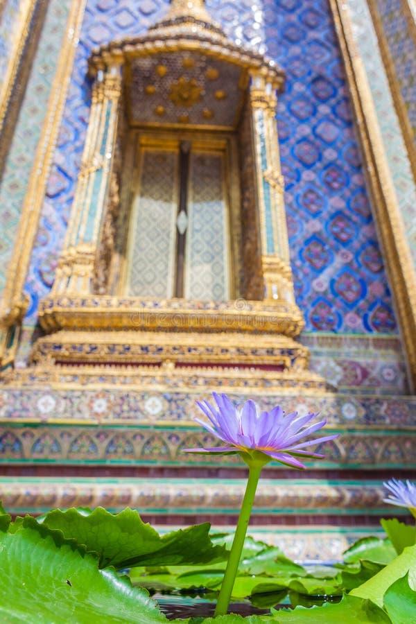 Download Fleur en Thaïlande photo stock. Image du landmark, bouddha - 45360208