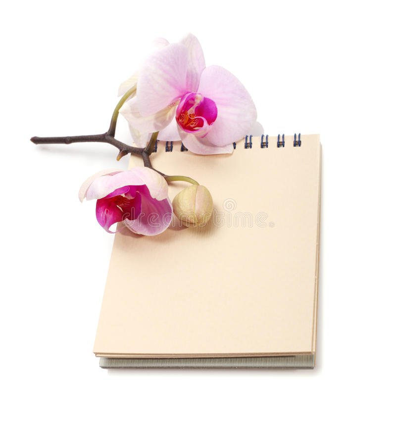 Fleur et bloc-notes d'orchidée image stock