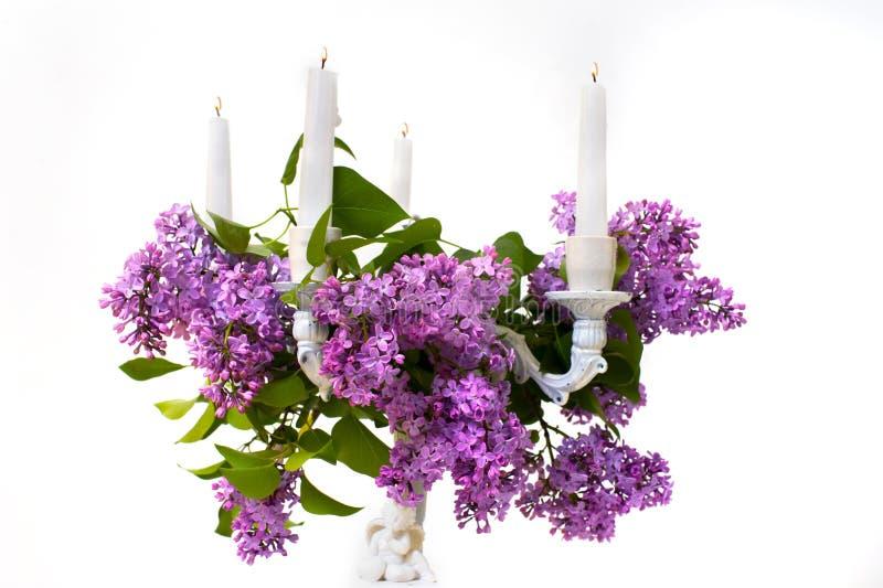 Fleur et chandelier lilas sur un fond blanc photographie stock libre de droits