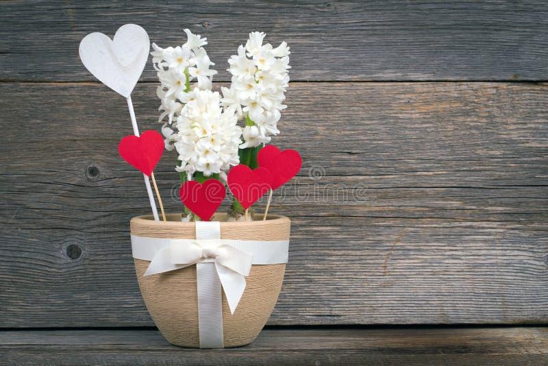Fleur et coeur dans un pot avec un arc sur les panneaux de fond images libres de droits