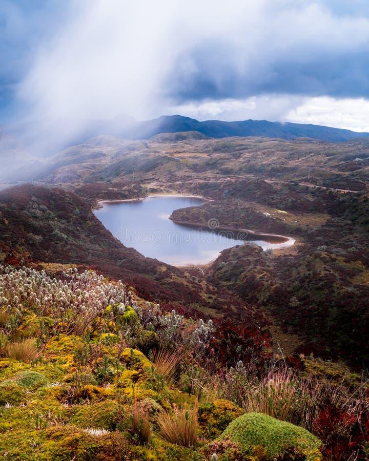 Fleur et lac impressionnants en Equateur image stock