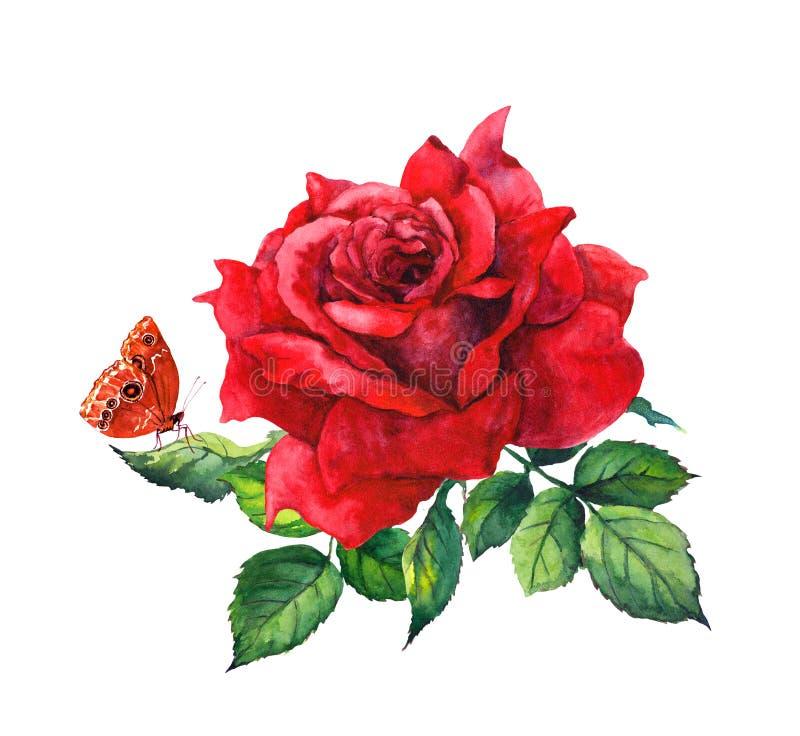 Fleur et papillon de rose de rouge Illustration botanique d'aquarelle illustration stock