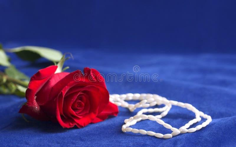 Fleur et perles photo libre de droits