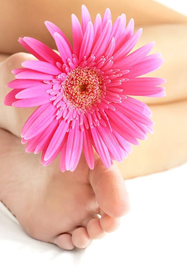Fleur et pieds images stock