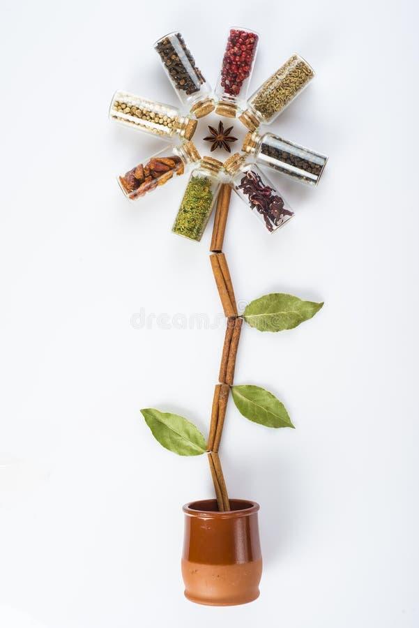 Fleur faite d'épices et herbes photographie stock