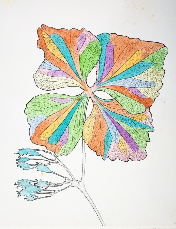Fleur illustrée en peintures colorées sur le blanc illustration de vecteur