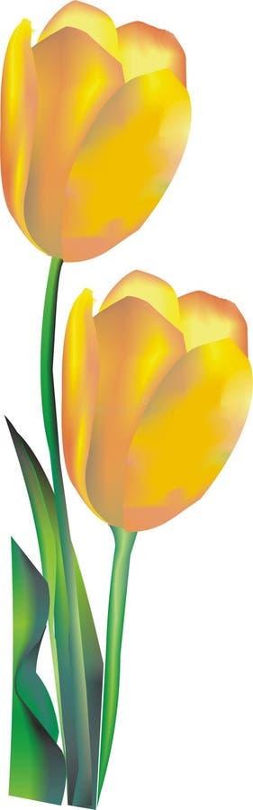 Fleur jaune illustration de vecteur