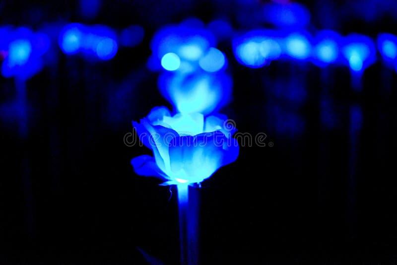 Fleur légère bleue abstraite photographie stock