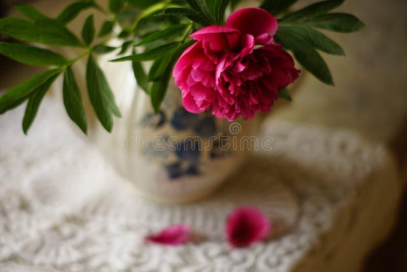 Fleur rose de pivoine dans un vase sur une table avec une nappe blanche photos stock