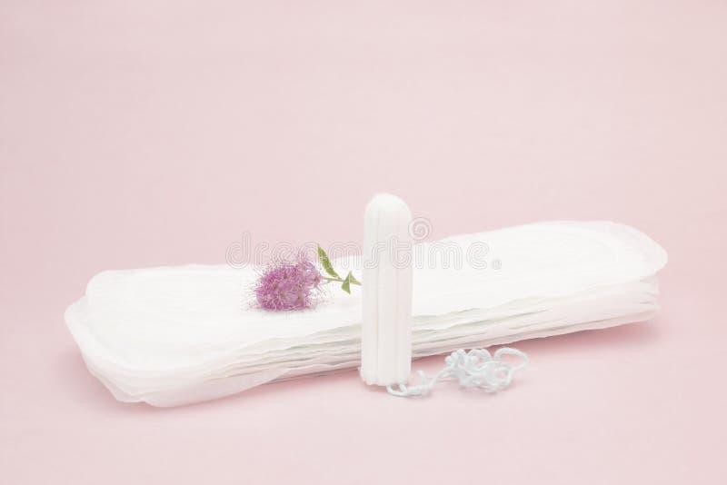 Fleur rose, tampon sanitaire menstruel et protections Jours critiques de femme, cycle gynécologique de règles Woma sanitaire de r image stock