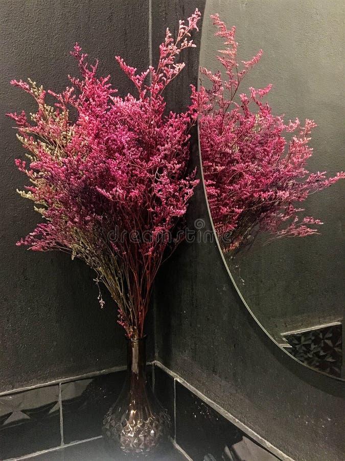 Fleur rouge d'herbe dans le miroir photos stock