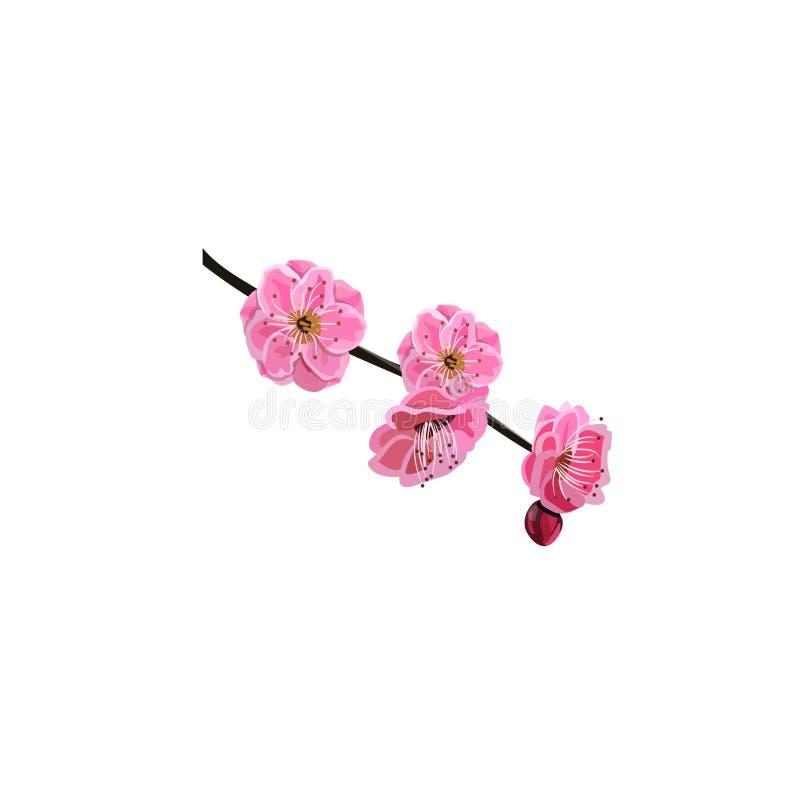 Fleur rouge de cerise illustration libre de droits