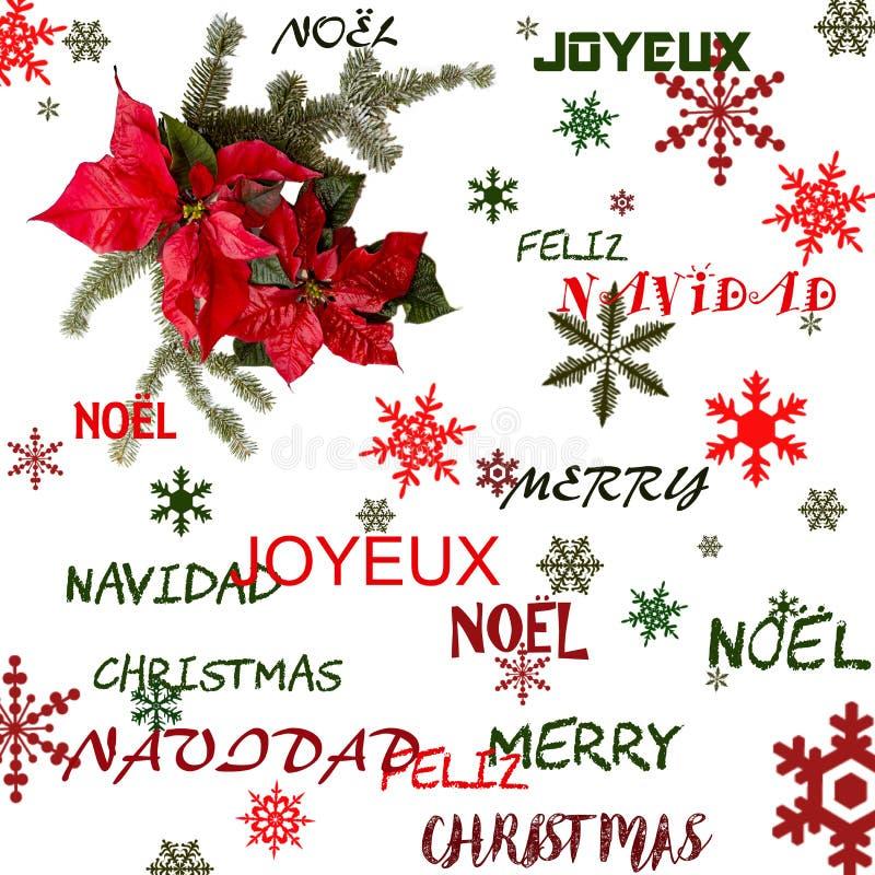 Fleur rouge de poinsettia avec l'arbre de sapin et neige sur le fond blanc Carte de Noël de salutations postcard christmastime Bl illustration de vecteur