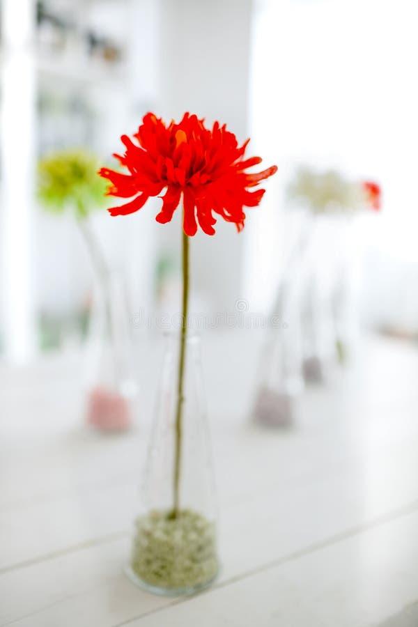 Fleur rouge en tant qu'éléments décoratifs photos stock
