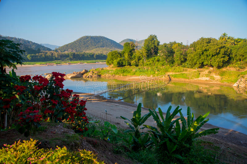 Fleur rouge Les montagnes et le Mekong Été laos Les Laotiens photo stock