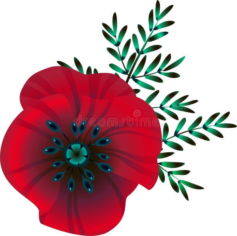 Fleur rouge lumineuse de pavot, illustration de vecteur, illustration libre de droits