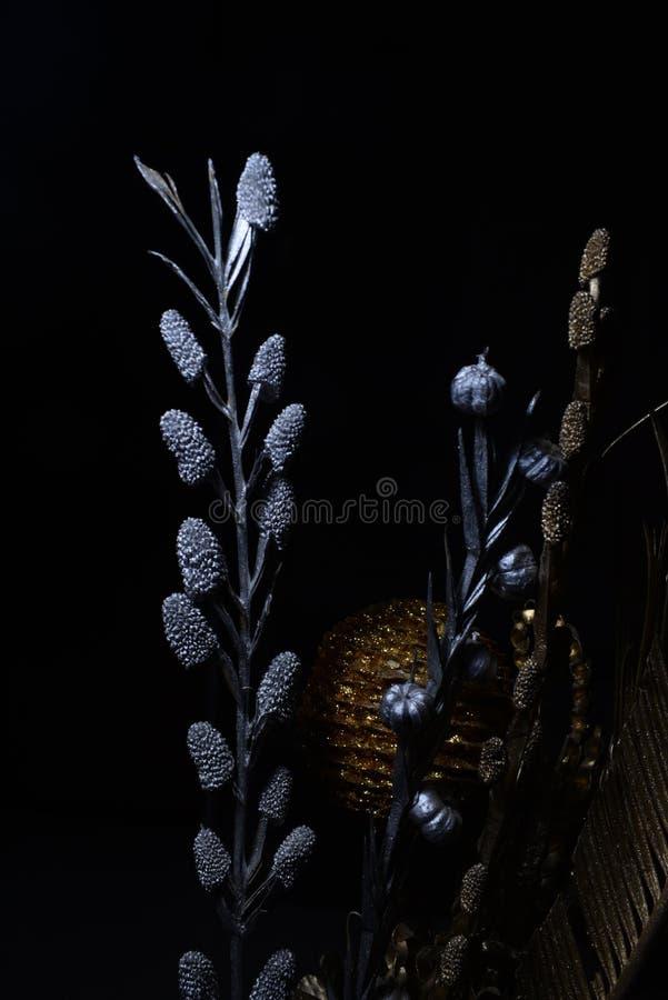 Fleur sèche avec les sangsues et le maïs de pin images libres de droits