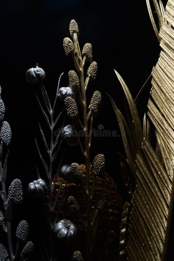 Fleur sèche avec les sangsues et le maïs de pin photos libres de droits