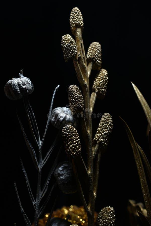 Fleur sèche avec les sangsues et le maïs de pin photos stock