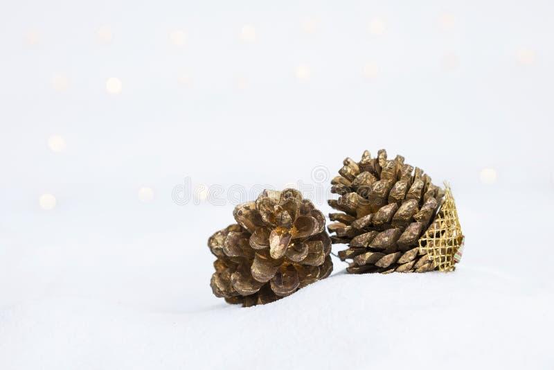 Fleur sèche de cône de pin peinte en or sur le sable blanc photos stock