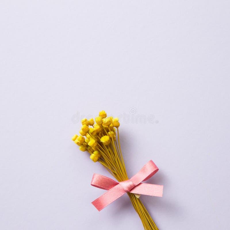 Fleur sèche jaune sur le fond pourpre photo stock