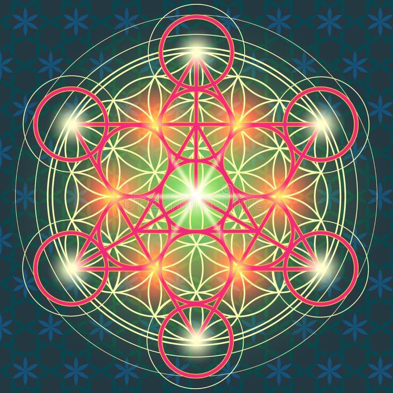 Fleur sacrée IV de la géométrie illustration stock
