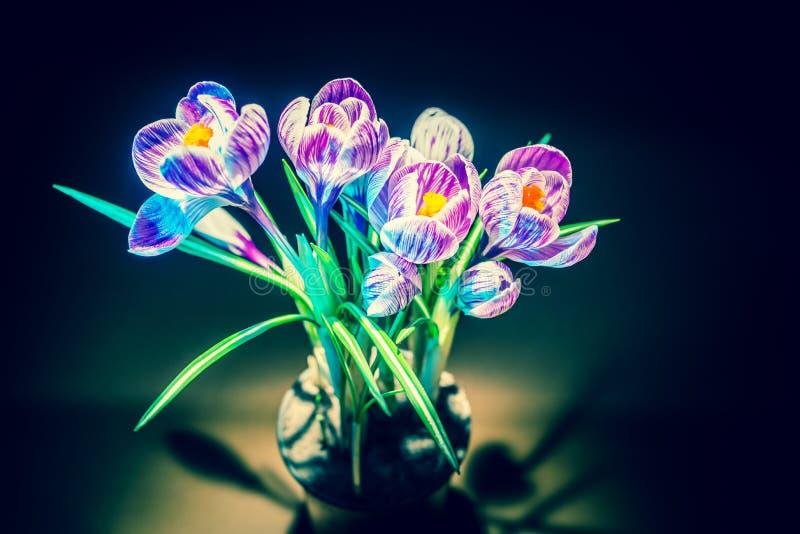 Fleur sauvage de crocus coloré images stock
