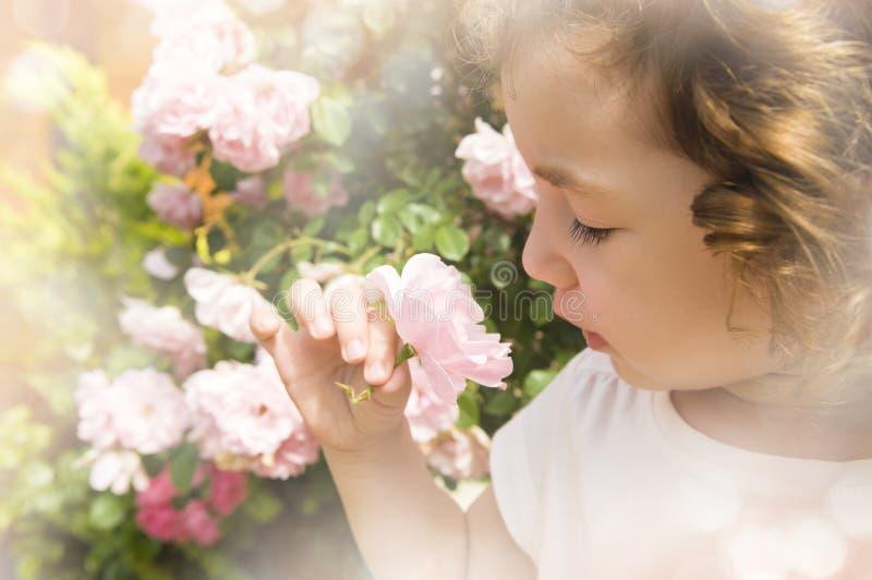 Fleur sentante de petite fille sur le fond flou brouillé image libre de droits